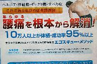 エゴスキュー腰痛解決プログラム